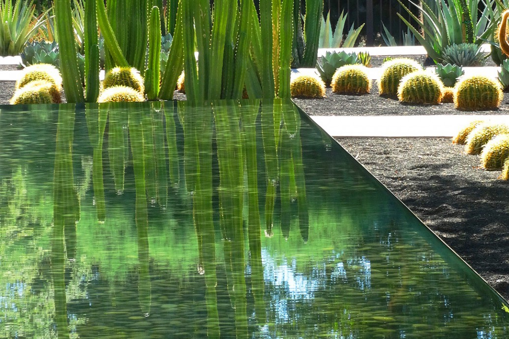 Sunnylands (Annenberg Gardens), Palm Springs California, Architekt: James Burnett, Foto Cindy Knoke